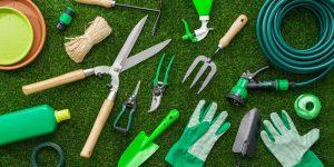 Gardeza Gardening