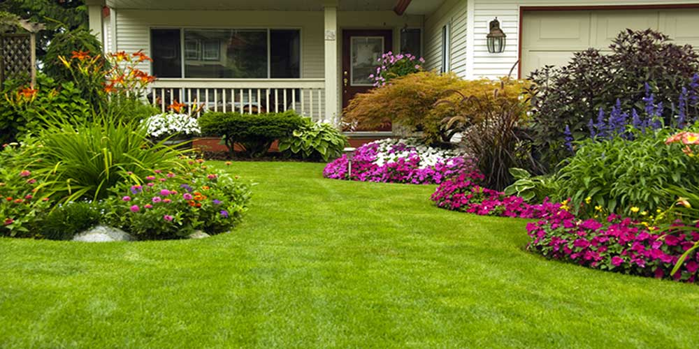 lawn care services in kolkata