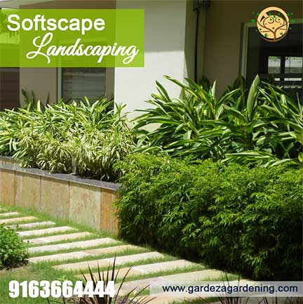 softscape LANDSCAPING