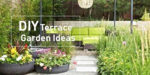 terrace garden tips